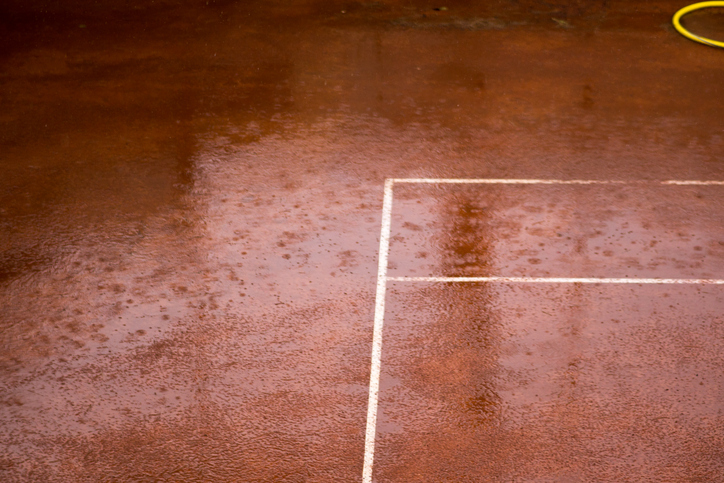 As the women's side of the draw finished out their respective matches to determine the semifinalists at Roland Garros, both men's quarterfinals matchups got underway, but were suspended and will resume Thursday due to rain